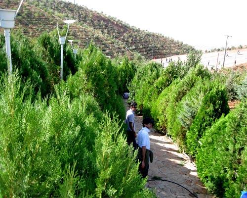 پارک طبیعت تبریز