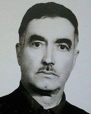 محمود انصاری