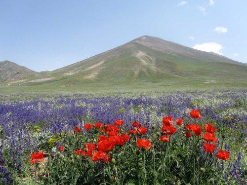 آذربایجان / سهند داغی