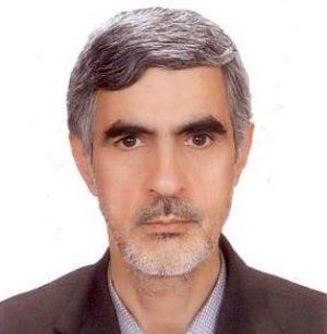 محمدعلی حسینپور فیضی
