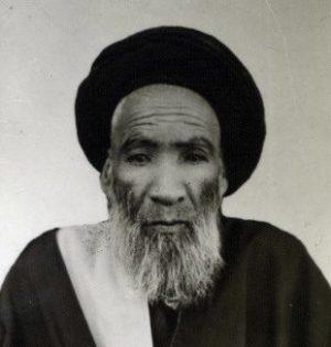 سید محمد مولانا