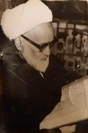 میرزا محمد مجتهد خیابانی