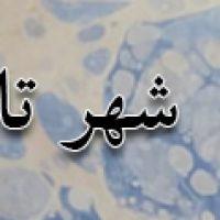 تبریز ، شهر تاریخ سازان بی ادعا
