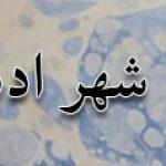 تبریز ، شهر ادیبان و فرهنگ پروران
